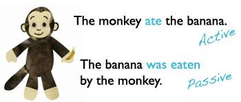 monkey passive