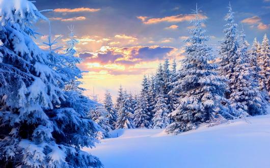 Мышление.речь сочинение на тему следы в лесу зимой электротехника корректор сочинение